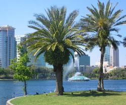 Vinn lyxig resa till Orlando